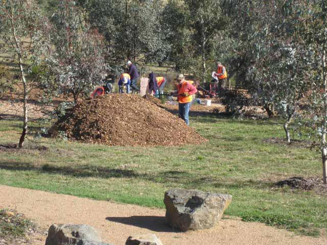 Preparing planting areas with mulch